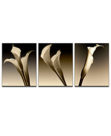 Ready2HangArt '3 Lillies' Oversized 3-Pc. Canvas Art Print Set