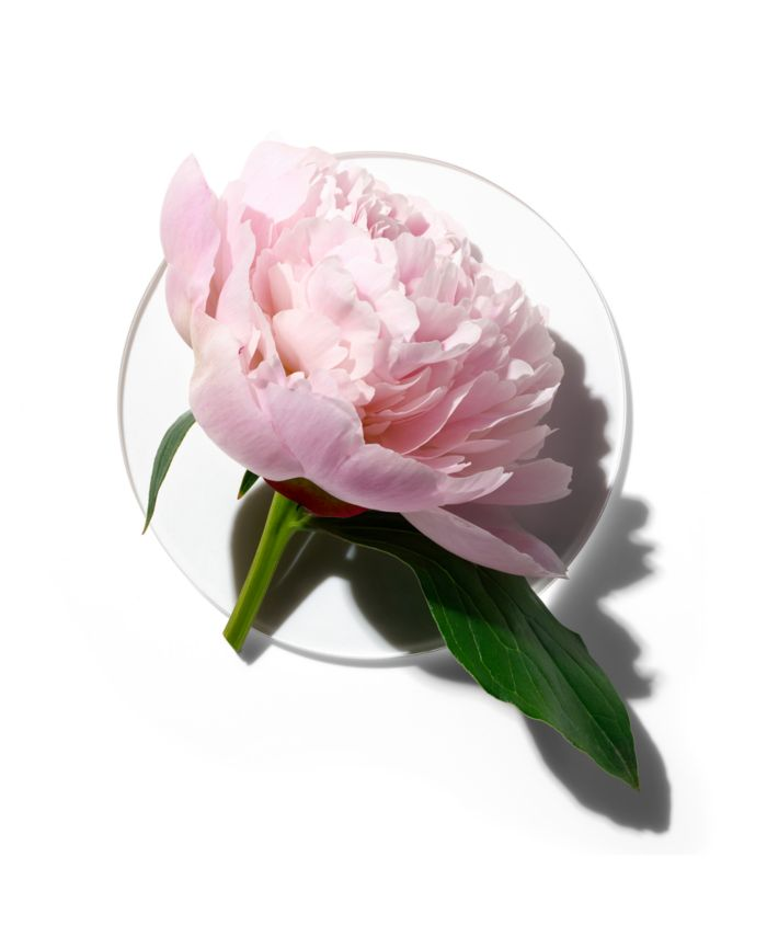 Clinique My Happy Peony Picnic, 0.5 oz & Reviews - All Perfume - Beauty - Macy's