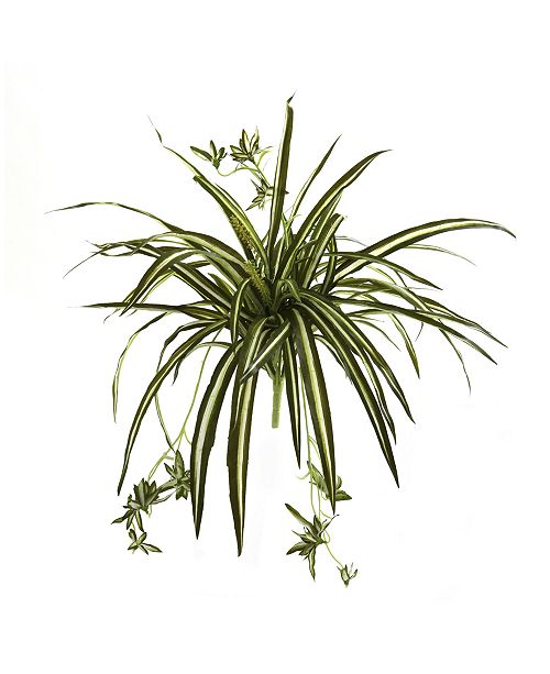"Nearly Natural 4-Pc. 23"" Spider Plant Artificial Bush Set"