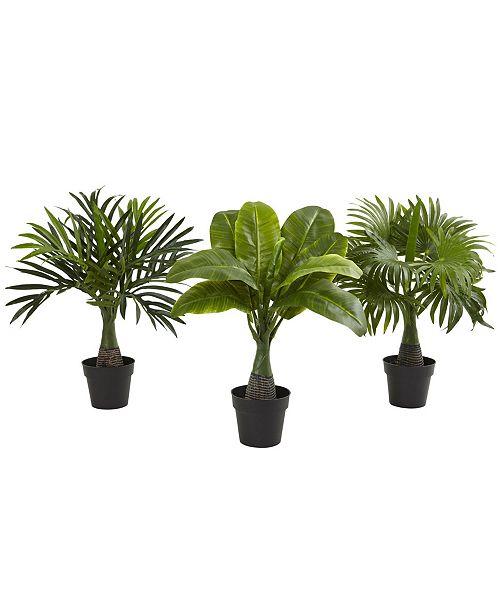 Nearly Natural 3-Pc. Areca, Fountain & Banana Palm Artificial Plant Set