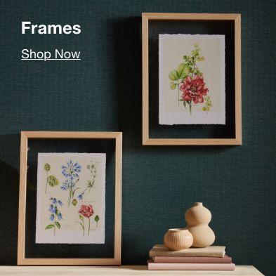 Frames, Shop Now