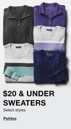 $20 and Under Sweaters, Select styles, Petites