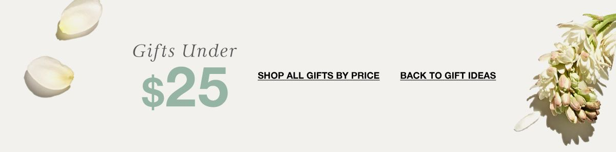 Gifts Under $25, Shop All Gifts by Price, Back to Gift Ideas