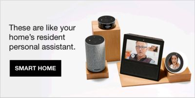These are like your home's resident personal assistant, Smart Home