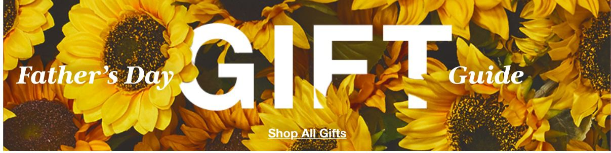 Father's Day Gift Guide, Shop All Gifts