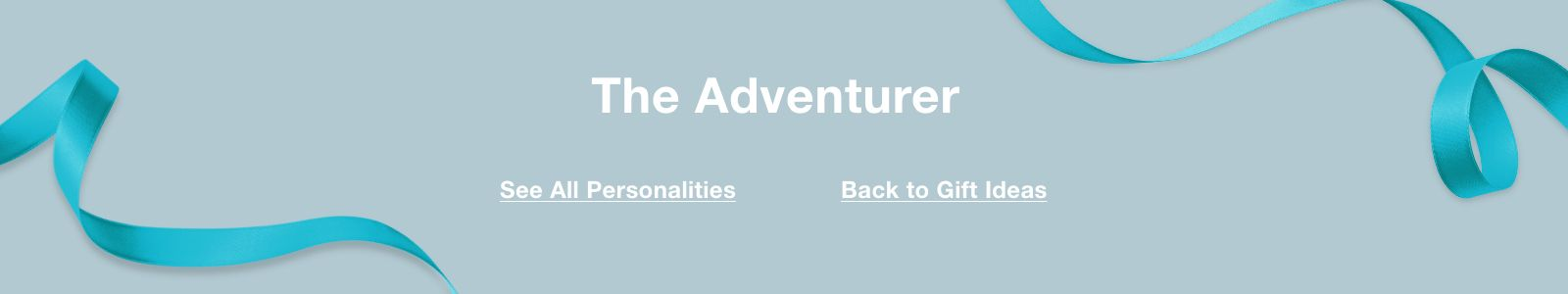 The Adventurer, See All Personalities, Back to Gift Ideas
