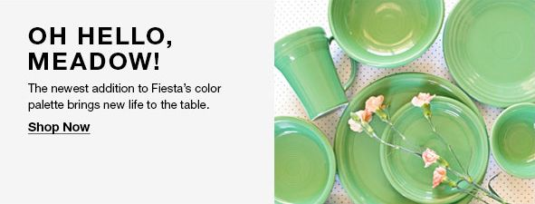 Oh Hello, Meadow! The newest addition to Fiesta's color palette brings new life to the table, Shop Now