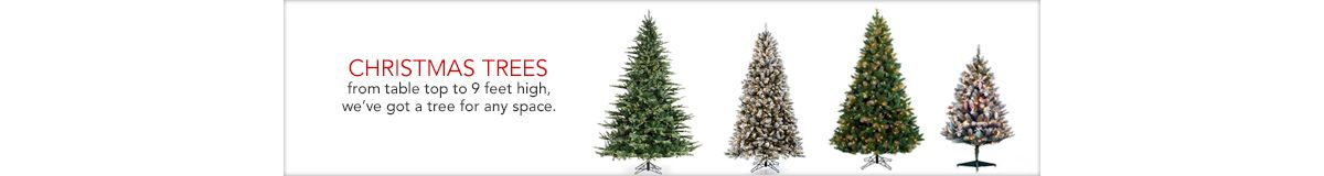 Christmas Trees, from table top to 9 feet high, we've got a tree for any space