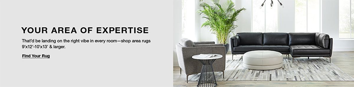 Your Area of Expertise, That'd landing on the right vibe in every room-shyop area rugs 9x12-10x13 and larger, Find Your Rug