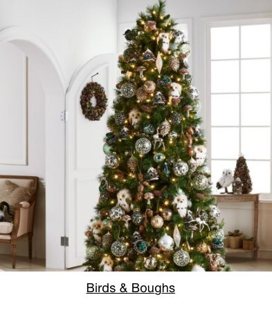 Birds and Boughs